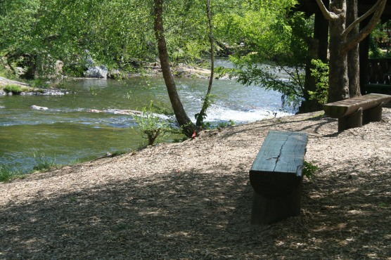 riverside benches