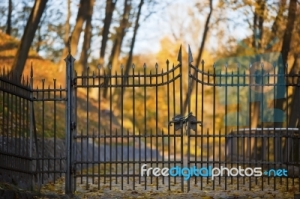 gate fdp