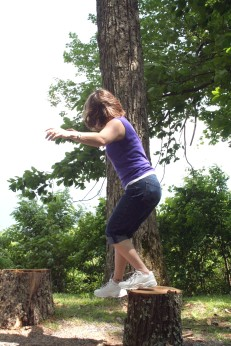 stump balance