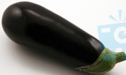 aub eggplant