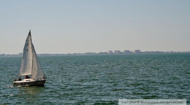 sailing wm