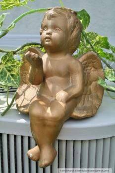 cherub 1 wm