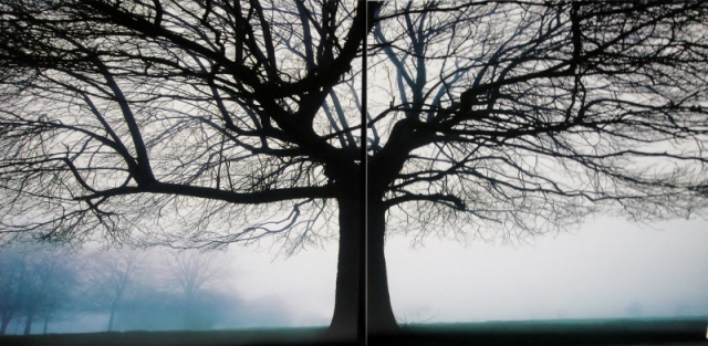 photo canvas (800x392)