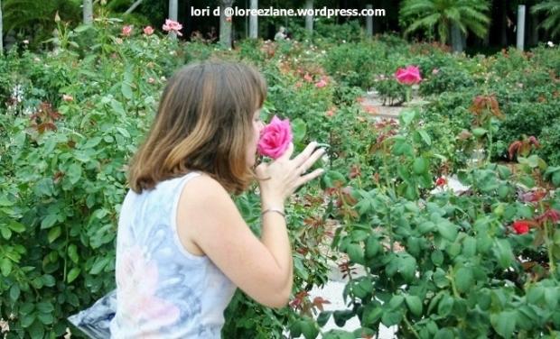 smell roses wm