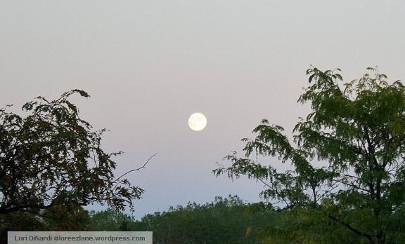 full moon chi wm