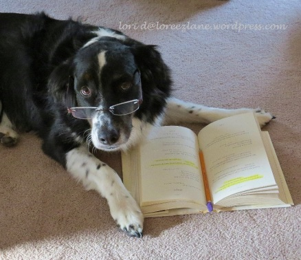 Max reads 1 (800x692) wm