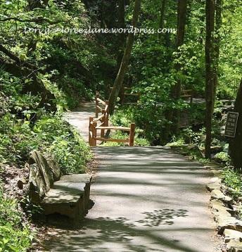 path-stream-bench (575x600) wm